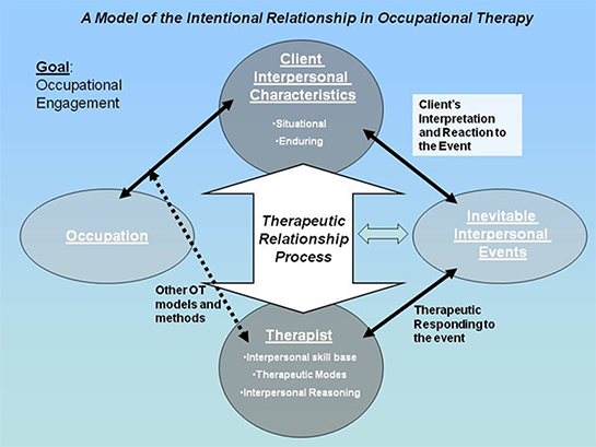 A Model of the Intentional Relationship in Occupational Therapy